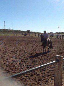 caballos2.