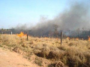 capacitaci-n-y-sanciones-m-s-severas-para-productores-que-causen-incendios-ruraless__dsc01120.jpg_595