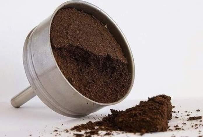 Investigan las propiedades antimicrobianas de los posos del café para  calzado -