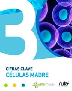 Portada infografía células madre