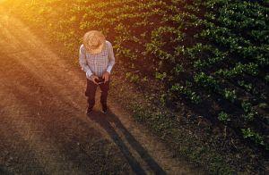 Agricultor usando dron - Mundobiotec