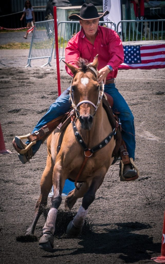 horse, rodeo, american
