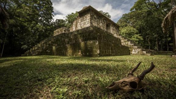 El Ceibal, Petén - foto por Ivan Castro