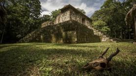 El Ceibal Petén foto por Ivan Castro - Fotos de Construcciones de los Mayas y sus Descendientes