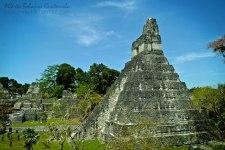 El Gran Jaguar en Tikal foto por Alberto Bolaños - Fotos de Construcciones de los Mayas y sus Descendientes