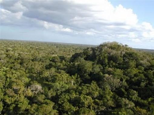 Piramide la Danta, la más alta de los Mayas y de América