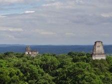 Tikal Antonio Portillo - Fotos de Construcciones de los Mayas y sus Descendientes