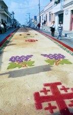 Alfombras de Semana Santa 6 foto por Catalino Ortega. - Galería - Fotos de las Tradicionales Alfombras de la Cuaresma y Semana Santa