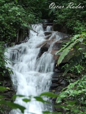 cascadas biotopo san marcos oscar rodas - Galería - Fotos de Cataratas y Cascadas en Guatemala