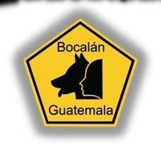 22 e1382379585512 - Bocalán Guatemala