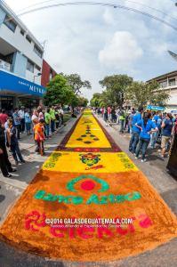 La alfombra con el nuevo record de ser la mas larga 2014 2 foto por GalasdeGuatemala 199x300 - La alfombra más larga del mundo