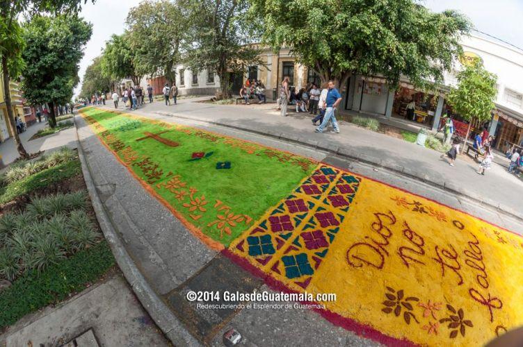 La alfombra m s larga del mundo for Alfombras el mundo