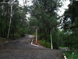 17 - Guía Turística - Cerro de la Candelaria, Mirador de la Cruz