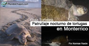 Guía Turística – Patrullaje nocturno de Tortugas en Monterrico