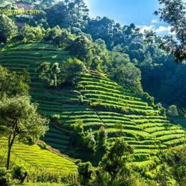 Terraseado agrícola en Sololá, Guatemala - foto por Esau Beltran Marcos