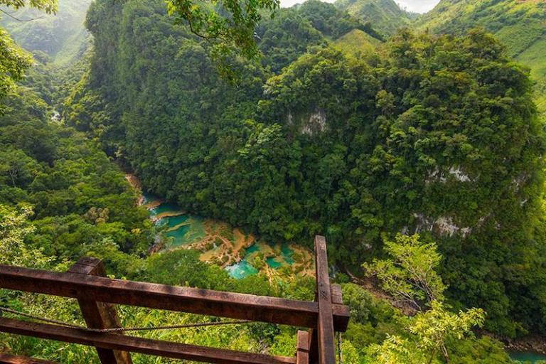 semuc champey alta verapaz foto por edgardo cume de pasion fotografica 768x512 - Tipos de Vegetación de Guatemala