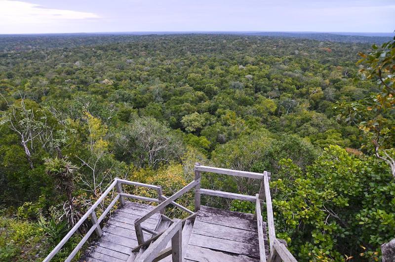 vista desde la danta el mirador peten foto por rony rodriguez - 10 Reservas Naturales en Guatemala