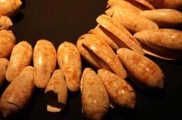 15747701 1323706660982811 6130940382409909481 n - El Museo Nacional de Arqueología y Etnología es declarado Patrimonio Cultural