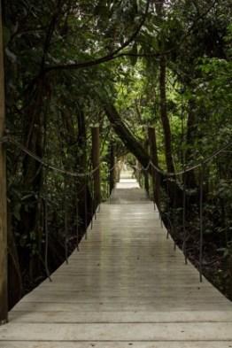 hacienda tijax 1 - Guía Turística a Hacienda Tijax