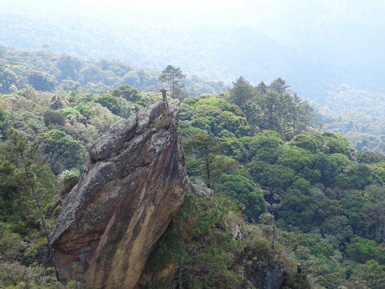 una de las alas de la pencc83a del angel en la sierra de las minas foto por luis burbano - 10 Sierras en Guatemala