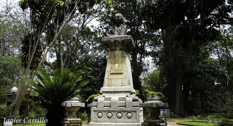 mg 1788 - Jardín Botánico de Guatemala