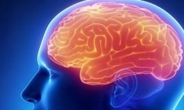 Aquí te contamos todo lo que debes saber sobre la epilepsia