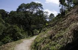 mg 6821 10 - El Parque La Asunción, la naturaleza dentro de la ciudad