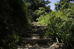 mg 6832 13 - El Parque La Asunción, la naturaleza dentro de la ciudad