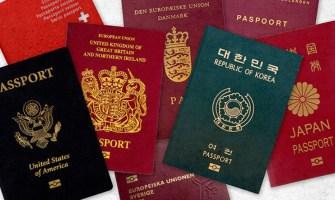 Colores de Pasaporte y su Significado