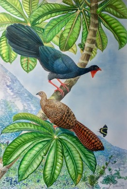 robin schiele 3 pre - Especies en peligro de extinción en las pinturas de Robin Schiele