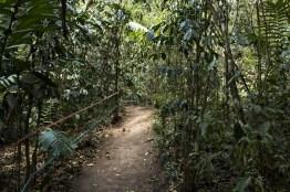 img 8861 11 - Conoce el parque ecológico de Guatemala reconocido en Italia