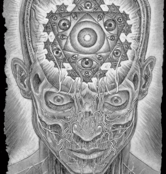 The Seer – Alex Grey