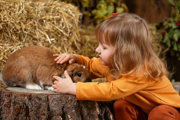 ¿Cómo ganarme la confianza de mi conejo? - niña acariciando conejo