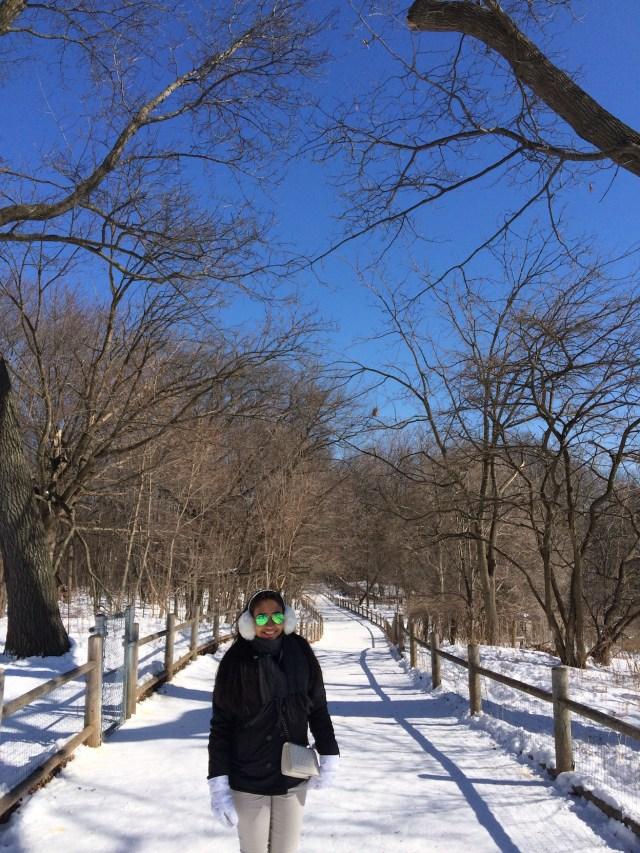Temperatura no inverno em Toronto