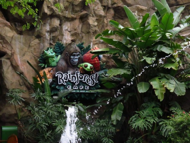 Rainforest Anima lkingdom
