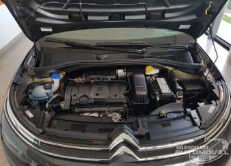 Citroën-C4-Cactus-PcD-Feel-Business- 2019-21
