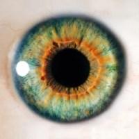 Encontro com pessoas com doenças hereditárias da retina