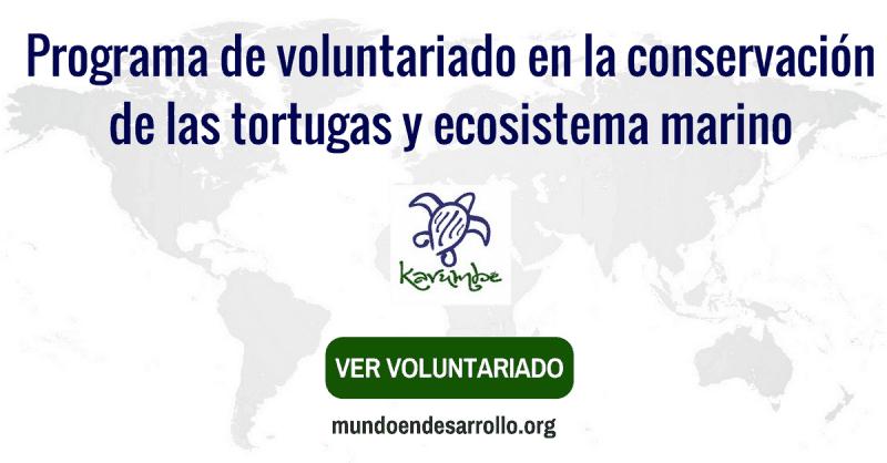 Programa de voluntariado internacional
