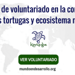 Programa de voluntariado internacional