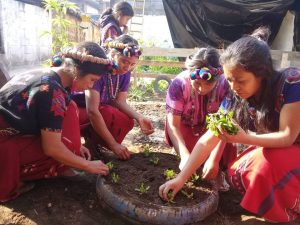 some women dressed in traditional Guatemalan clothing crouch down on the ground planting seedlings