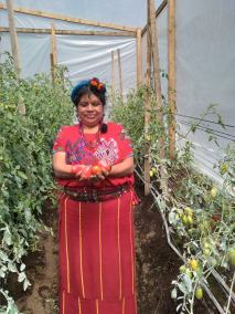 ACEFOMI leader in greenhouse with produce