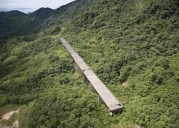 Foto gump do dia: O viaduto no meio da floresta