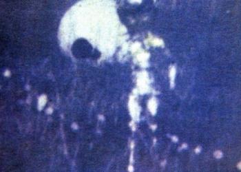 Foto Gump do dia: O alien de Ronnie Hill