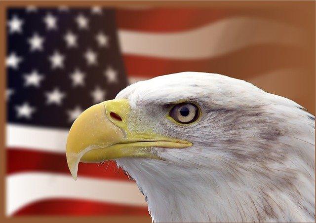 Águia exclusiva dos EUA