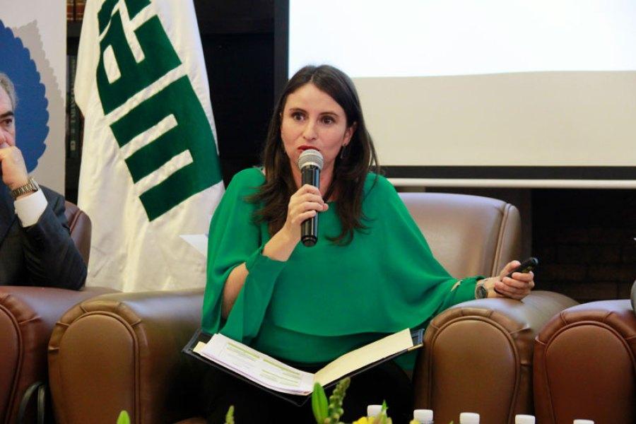 Mtra. Manett Vargas García, directora de Qué Funciona para el Desarrollo