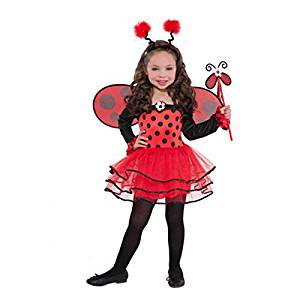 Disfraz de Mariquita Bailarina Infantil - mundomariquita.com