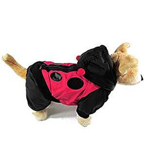 Chaqueta de Mariquita para Perro - Varios Tamaños - mundomariquita.com
