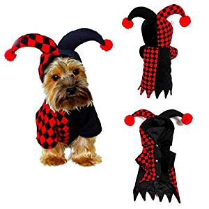 Disfraz de Halloween para Mascotas (perros, gatos) - Mariquita Harlequin - mundomariquita.com