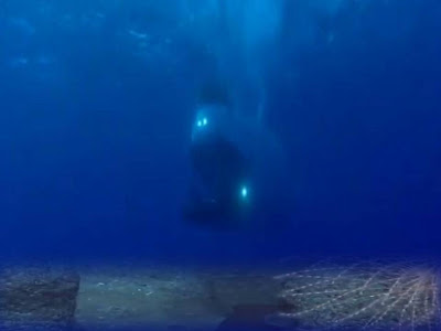 Científicos encuentran posible continente perdido en el océano Atlántico – 07 de mayo 2013