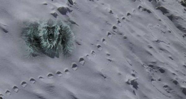 Excursionista ve huellas del Yeti en el Himalaya